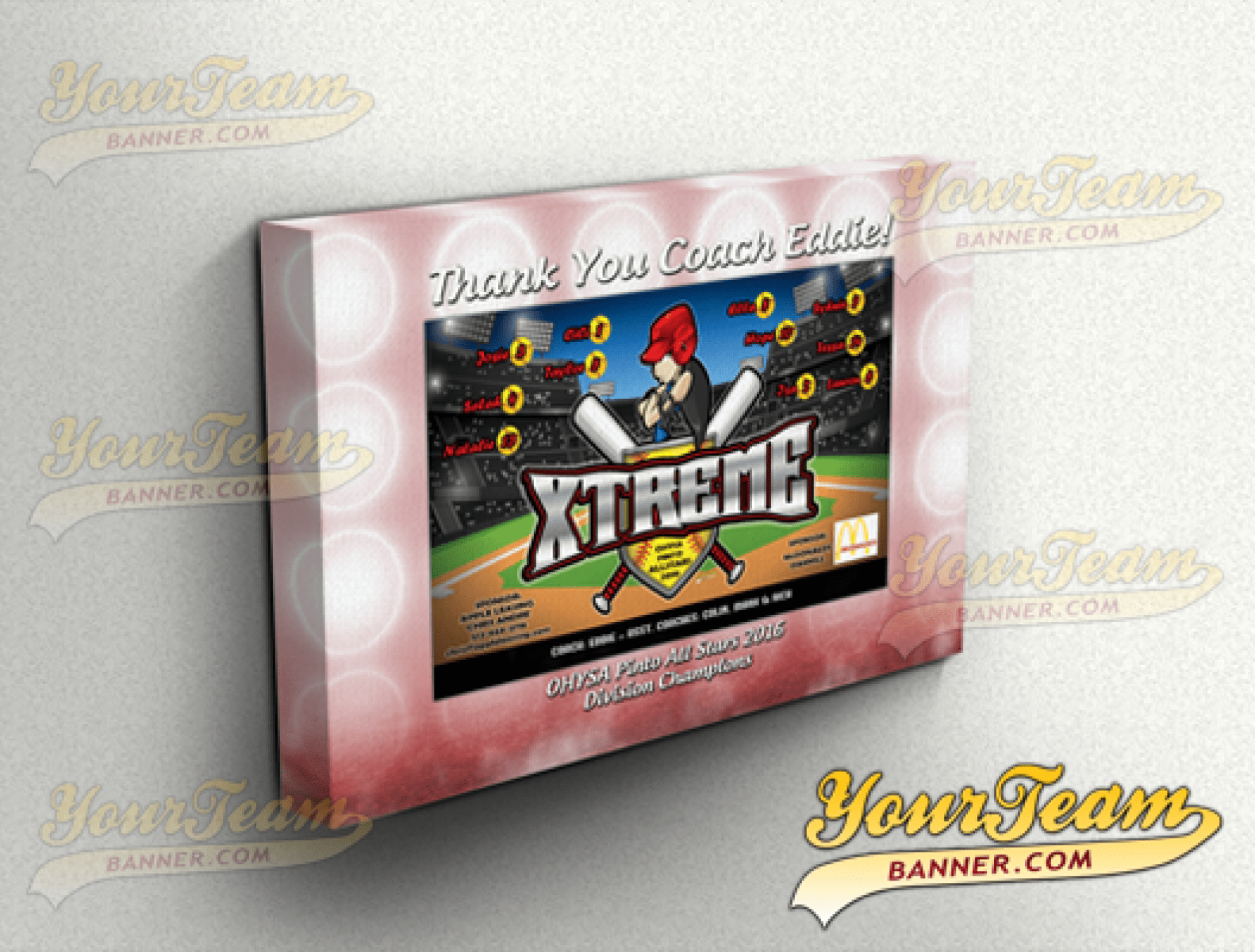 softball canvas gift