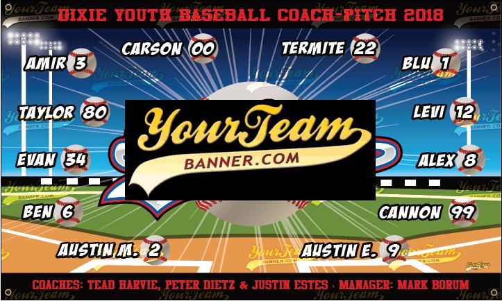 Baseball Team Banner Samples | Your Team Banner - Next Day