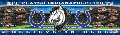 Colts, 10'x2' - 046