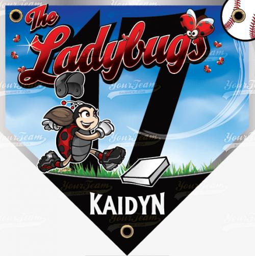 Ladybugs - 030