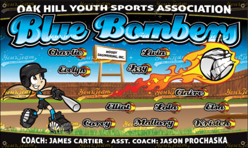 Blue Bombers - 271