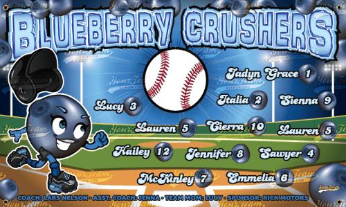 Blueberry Crushers -290