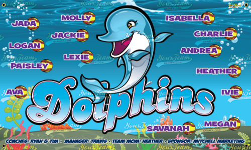 Dolphins - 300